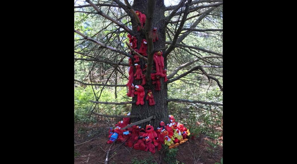 A woodland tree draped with a variety of Elmo dolls